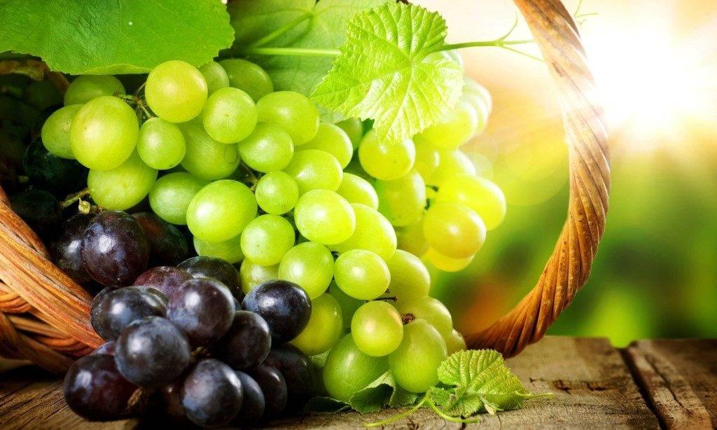 Белый и красный виноград