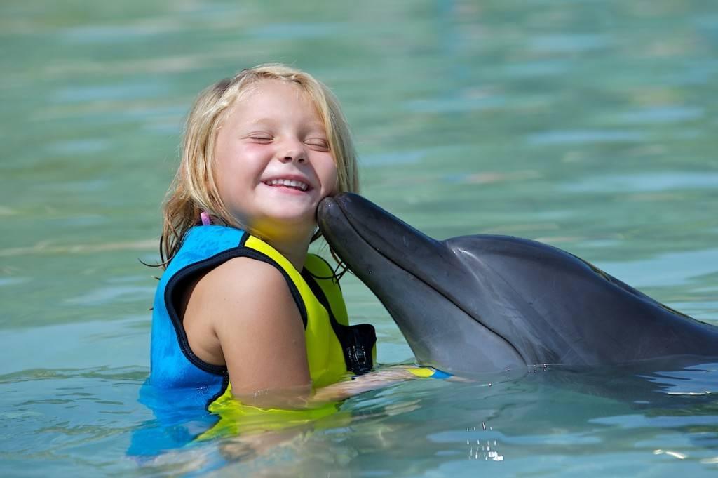 Дельфин с ребенком фото