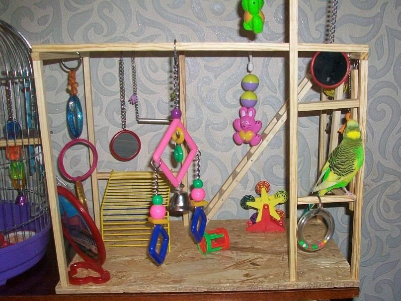 Попугаи игрушки своими руками
