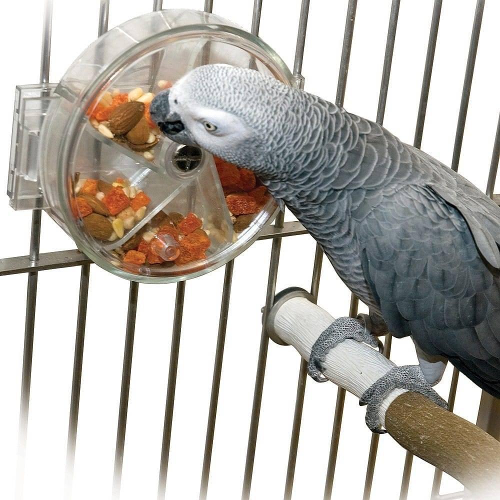 Колесо-кормушка для попугая