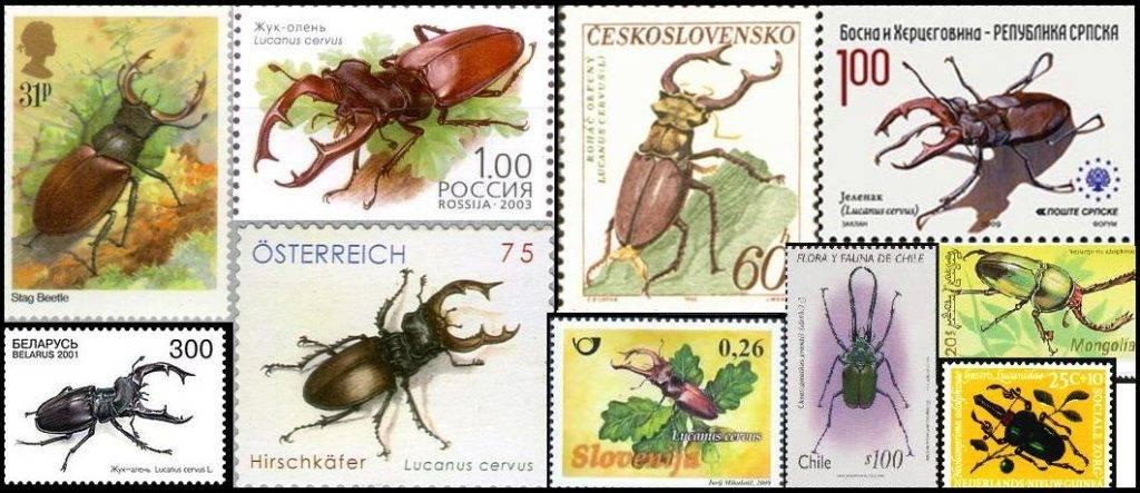 Марки с изображением жуков рогачей