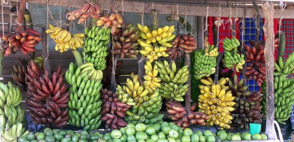 Виды бананов фото