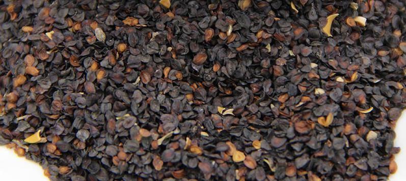 Семена гвоздики фото