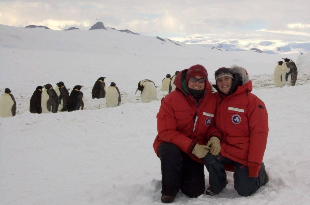 Переворачиватель пингвинов фото
