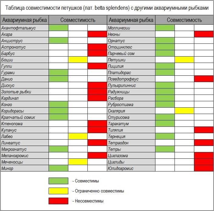 Таблица совместимости рыбок петушков с другими аквариумными рыбками фото