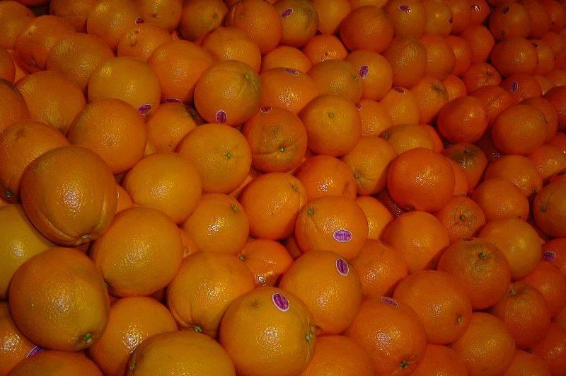Пупочный апельсин Кара-Кара фото