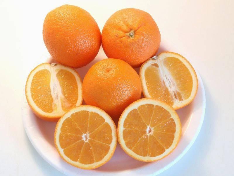 Обыкновенный (овальный) апельсин сорта Салустиана фото