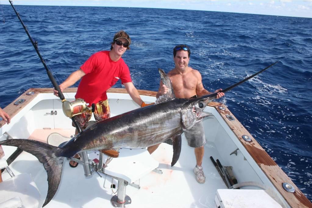 Как выглядит рыба меч фото