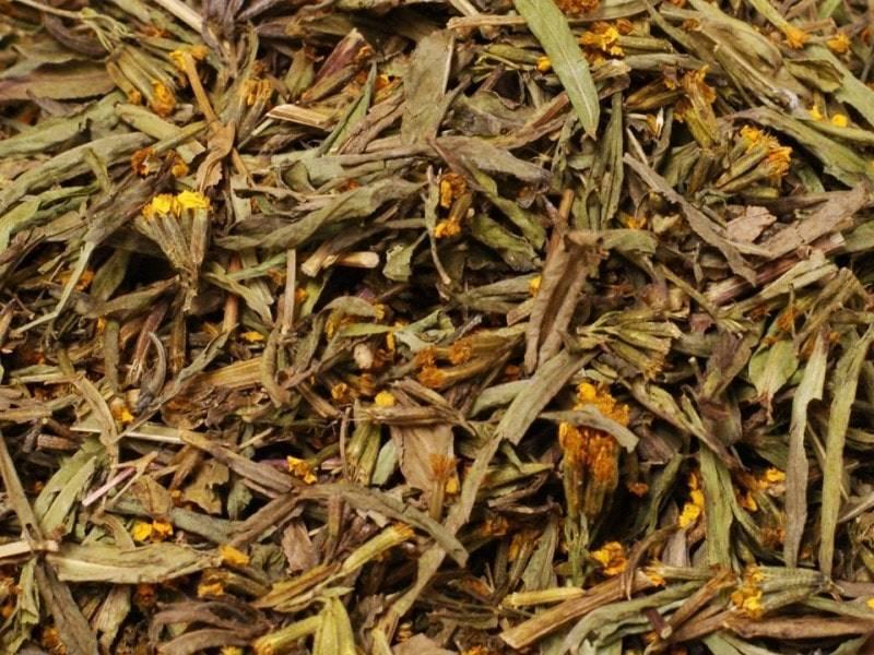 Высушенные ясные бархатцы фото (Tagetes lucida)
