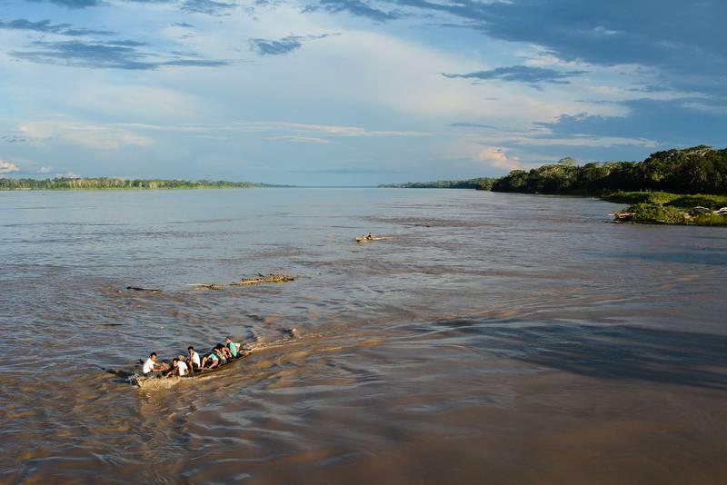 Место обитания пираньи фото