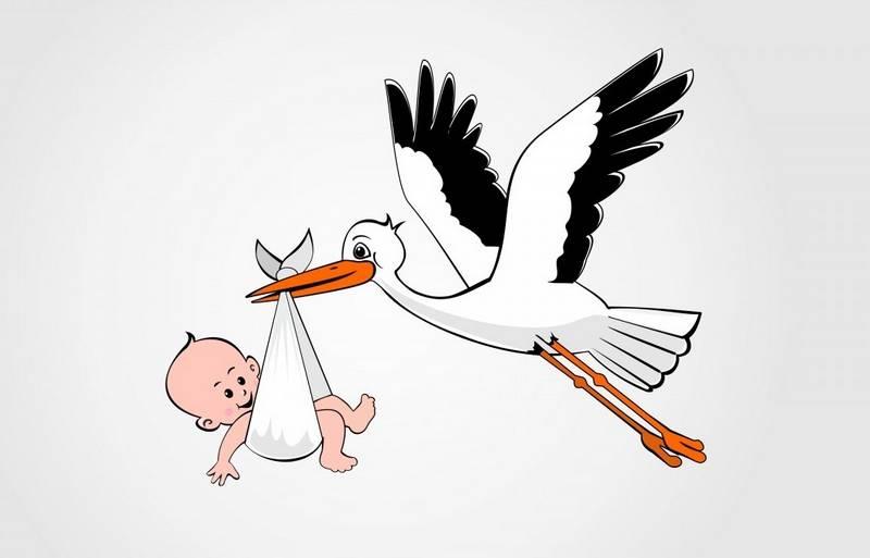 Прикольные картинки аиста с ребенком