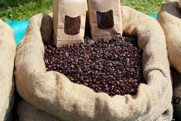 Джутовые мешки с кофе фото