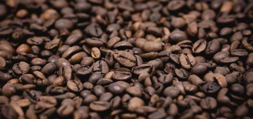Кофе фото (лат. Coffea)