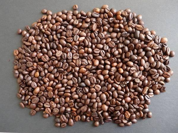 Зерна арабики фото (лат. Coffea arabica)